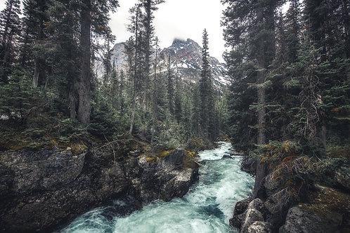 Cascade Creek at Grand Teton