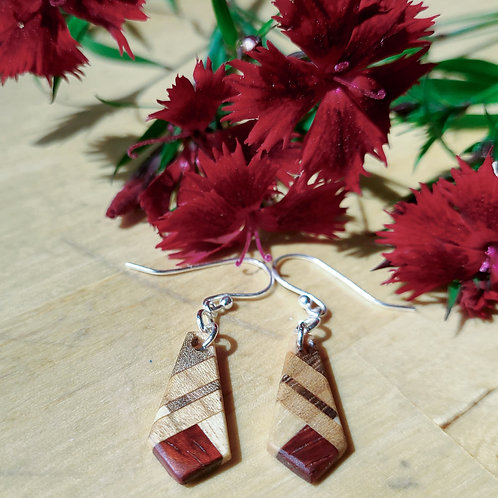 Earrings with Exotic Wood