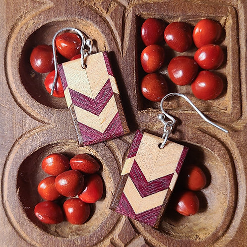 Earrings with Distinctive Pattern