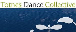 Totnes-DC-logo.jpg