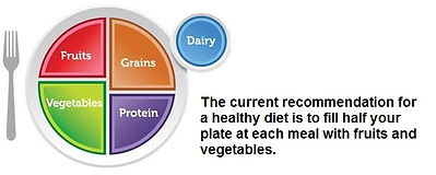 myplate_magenta with text.jpg