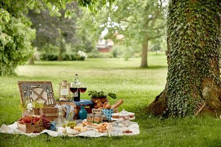 fancy picnic.jpg