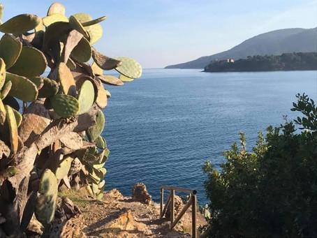 Cactus Path from Villa Rosa dei Venti