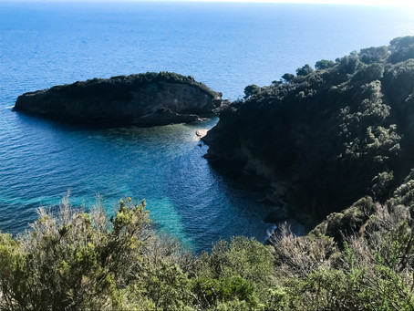 Ready to Dream your Vacation in Tuscany Elba Island ?