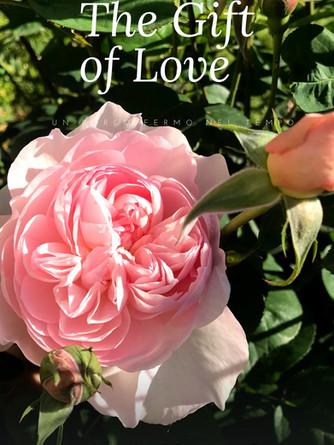 the gift of love.jpg