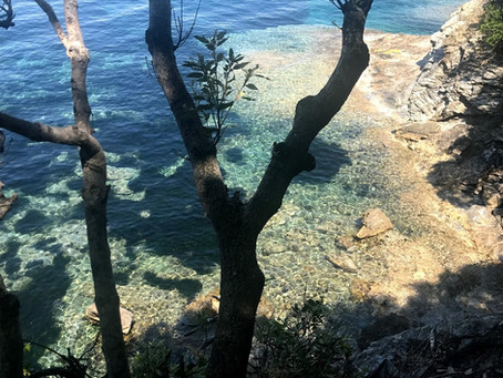 Hidden Gem to discover in Elba :tiny beach with clear crystal water