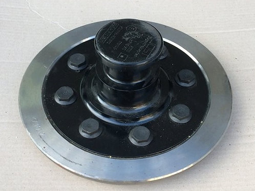 Комплект шкворня с плитой CAPUS 2'и Orlandi