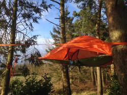 Tentsile Tree Tent
