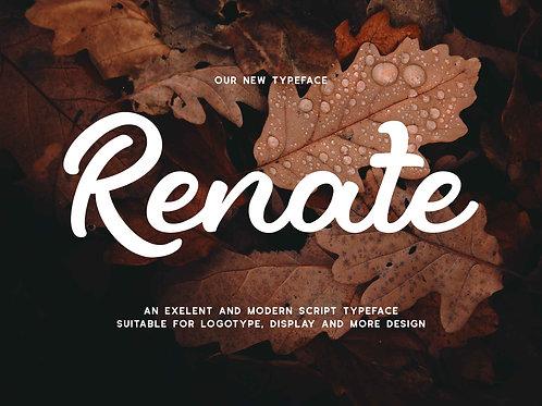 Renate – Modern Script Typeface