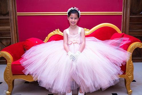 Robe Princesse tulle