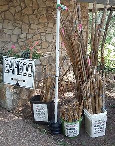 Bamboo Branch_garden stakes.jpg