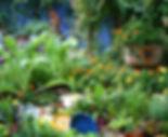 Lucinda_Hutsons_Garden_Plates.jpg