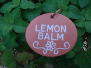 Garden Charems_Lemon Balm.jpg