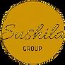 Sushila Synthetics Group Logo