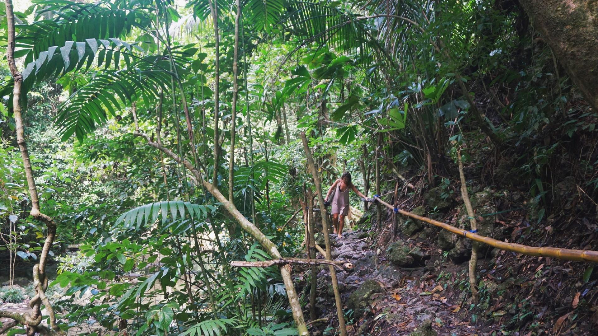 Livingston - Waterfall Hike