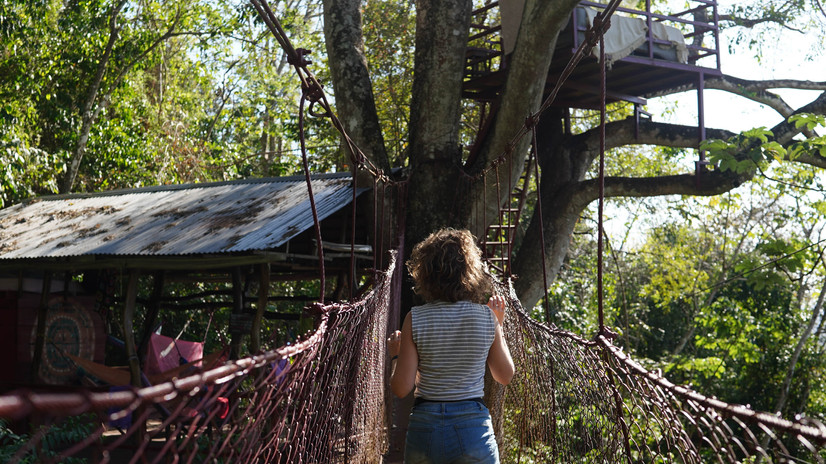 Treehouse Hostel