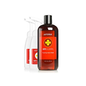 On-Guard-foaming-handwash-kit.jpg