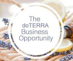 The Business Opportunity