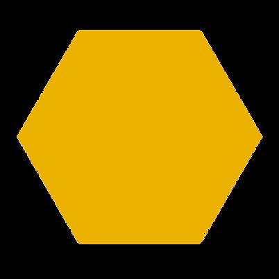 honeypot yello hexagon.png