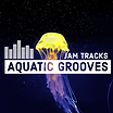 Aquatic Funk Fusion Grooves