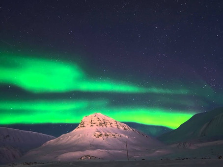 Svalbard - A home for everybody