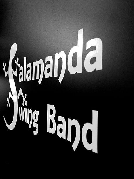Salamanda swing ban slant.jpg