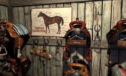 Тайна ранчо Теней