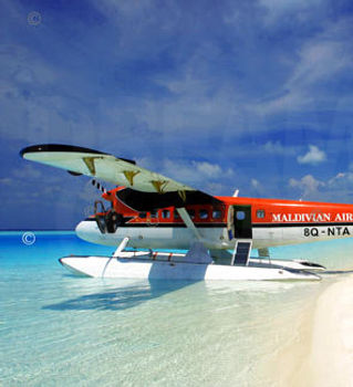 maldivian-air-taxi-seaplane-maldives.jpg