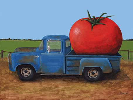 A Memorable Tomato