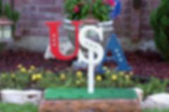 FJ04-USA! USA! USA! this will brighten your yard W/ silver stars