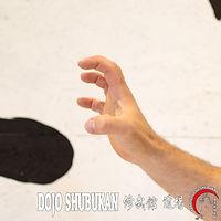 KOSHOSHOU TE WAZA Técnica de brazos Escuela Shubukan 修武館 学校 Uechi Ryu UechiRyu 上地流 空手道 空手術 唐手術 唐手道 Jose Cifuentes