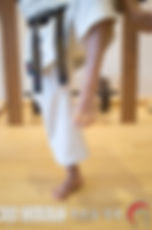 TSURUDACHI TACHIKATA Posiciones Escuela Shubukan 修武館 学校 Uechi Ryu UechiRyu 上地流 空手道 空手術 唐手術 唐手道 Jose Cifuentes