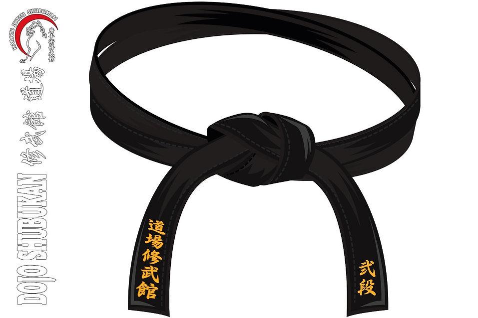 Cinturón Negro 2º DAN