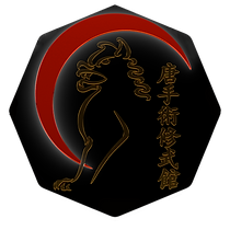 Luna Okinawa Dojo Shubukan 道場 修武館 UechiRyu Uechi Ryu 上地流 空手道 空手術 唐手術 唐手道 Karate Tradicional Clasico Shubukai 修武会
