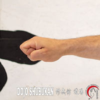 Shouken TE WAZA Técnica de brazos Escuela Shubukan 修武館 学校 Uechi Ryu UechiRyu 上地流 空手道 空手術 唐手術 唐手道 Jose Cifuentes