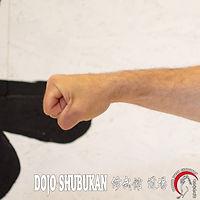 Daiken TE WAZA Técnica de brazos Escuela Shubukan 修武館 学校 Uechi Ryu UechiRyu 上地流 空手道 空手術 唐手術 唐手道 Jose Cifuentes