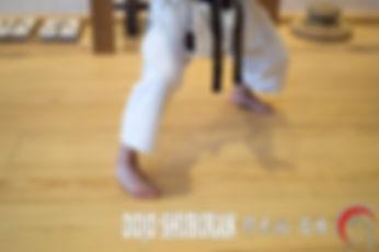 SUEGOSHI DACHI TACHIKATA Posiciones Escuela Shubukan 修武館 学校 Uechi Ryu UechiRyu 上地流 空手道 空手術 唐手術 唐手道 Jose Cifuentes