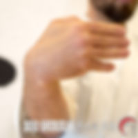 Shukou TE WAZA Técnica de brazos Escuela Shubukan 修武館 学校 Uechi Ryu UechiRyu 上地流 空手道 空手術 唐手術 唐手道 Jose Cifuentes