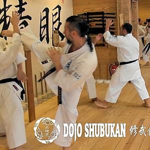 Gassyuku Shubukai Uechi Ryu Kuno Ha
