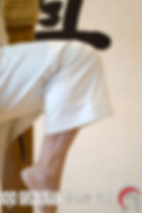 HIZA ASHI WAZA Técnica de pierna Escuela Shubukan 修武館 学校 Uechi Ryu UechiRyu 上地流 空手道 空手術 唐手術 唐手道 Jose Cifuentes