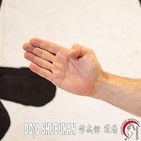 Shutou TE WAZA Técnica de brazos Escuela Shubukan 修武館 学校 Uechi Ryu UechiRyu 上地流 空手道 空手術 唐手術 唐手道 Jose Cifuentes