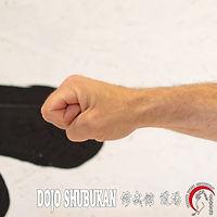 Chuken TE WAZA Técnica de brazos Escuela Shubukan 修武館 学校 Uechi Ryu UechiRyu 上地流 空手道 空手術 唐手術 唐手道 Jose Cifuentes