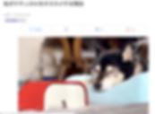 スクリーンショット 2020-06-01 23.12.07.png