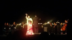 Noche de Zarzuela Concert