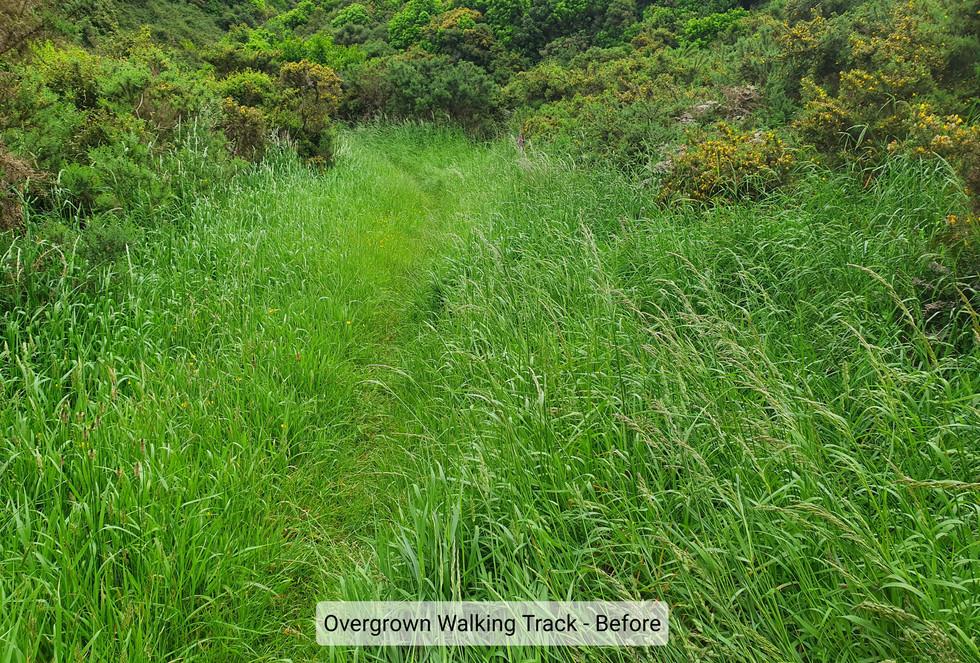 Grass Mowing Walking Tracks 1.jpg