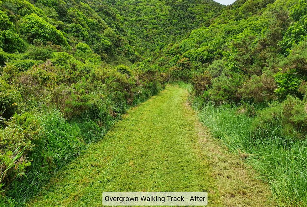 Grass Mowing Walking Tracks 2.jpg