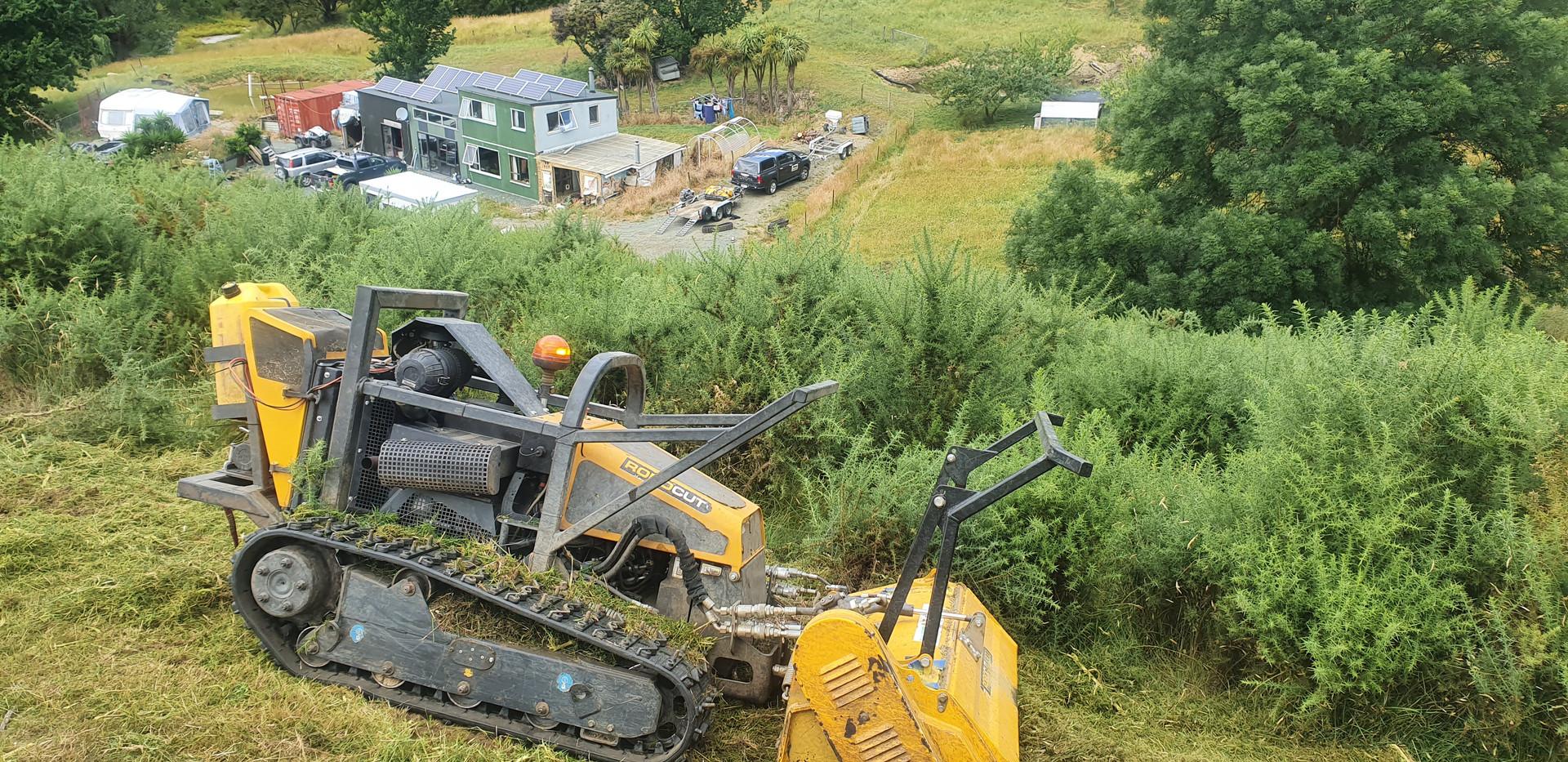 Gorse Clearing Mulching Nelson 1.jpg