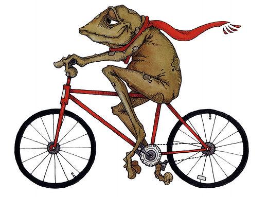 FrogBike.jpg