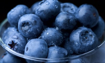 Bursting with blueberries!
