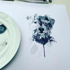 Puppy Portrait in Progress